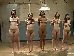 A group of naked girls are tied up in the basement and waiting to be humiliated properly